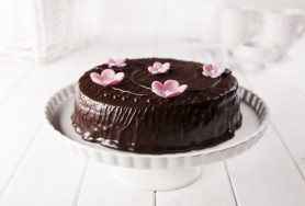 Cream and cocoa sponge cake with cherries, covered with chocolate cream icing